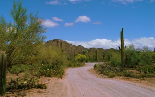 The road to Hacienda Linda