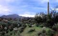 The Hacienda's back yard